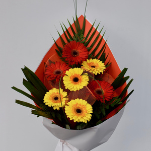 Our gerberas are loving the Spring and producing lots of beautiful flowers so we have a special offer for you.  See our bouquets page.